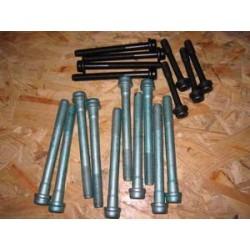VM cylinder head bolts (18 units)