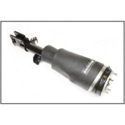 Jambe de suspension / Boudin AV Droit RR L322 -DUNLOP
