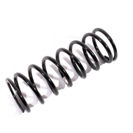Front LH Discovery 1 300TDI Suspension Springs
