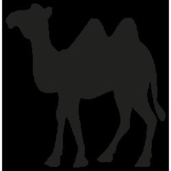 Autocollant CAMEL