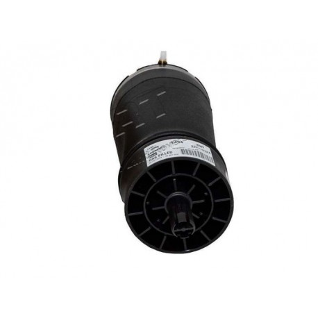 Rear Air Bag for Range Rover Sport L494 - Right Hand Side - genuine